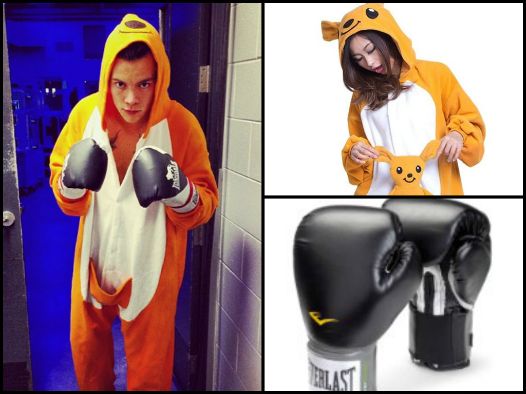 Harry Styles Kangaroo Costume
