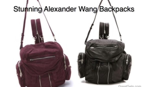 Stunning Alexander Wang Backpack