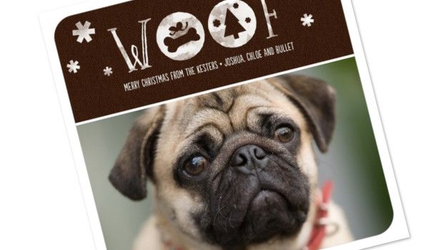 best pet holiday cards - Dog Christmas Card Ideas