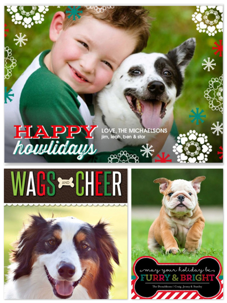 Dog & Pet Holiday Cards, Best Pet Holiday Cards
