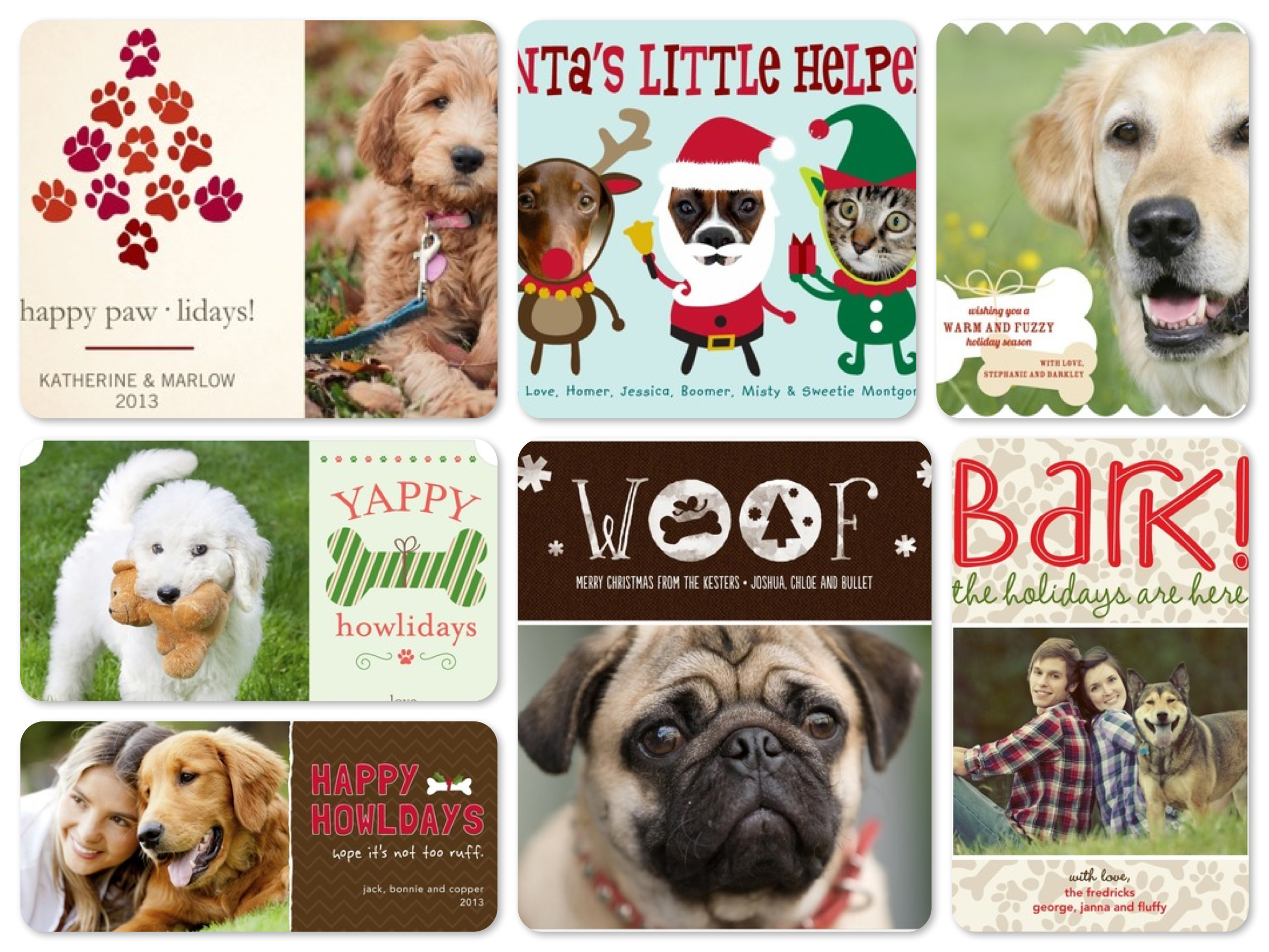 Pet Holiday Cards, Best Pet Holiday Cards
