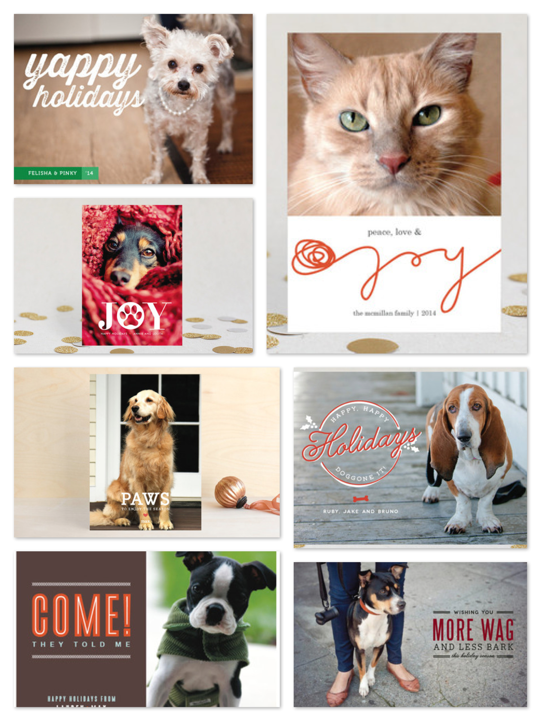 Pet Photo Holiday Cards, Best Pet Holiday Cards