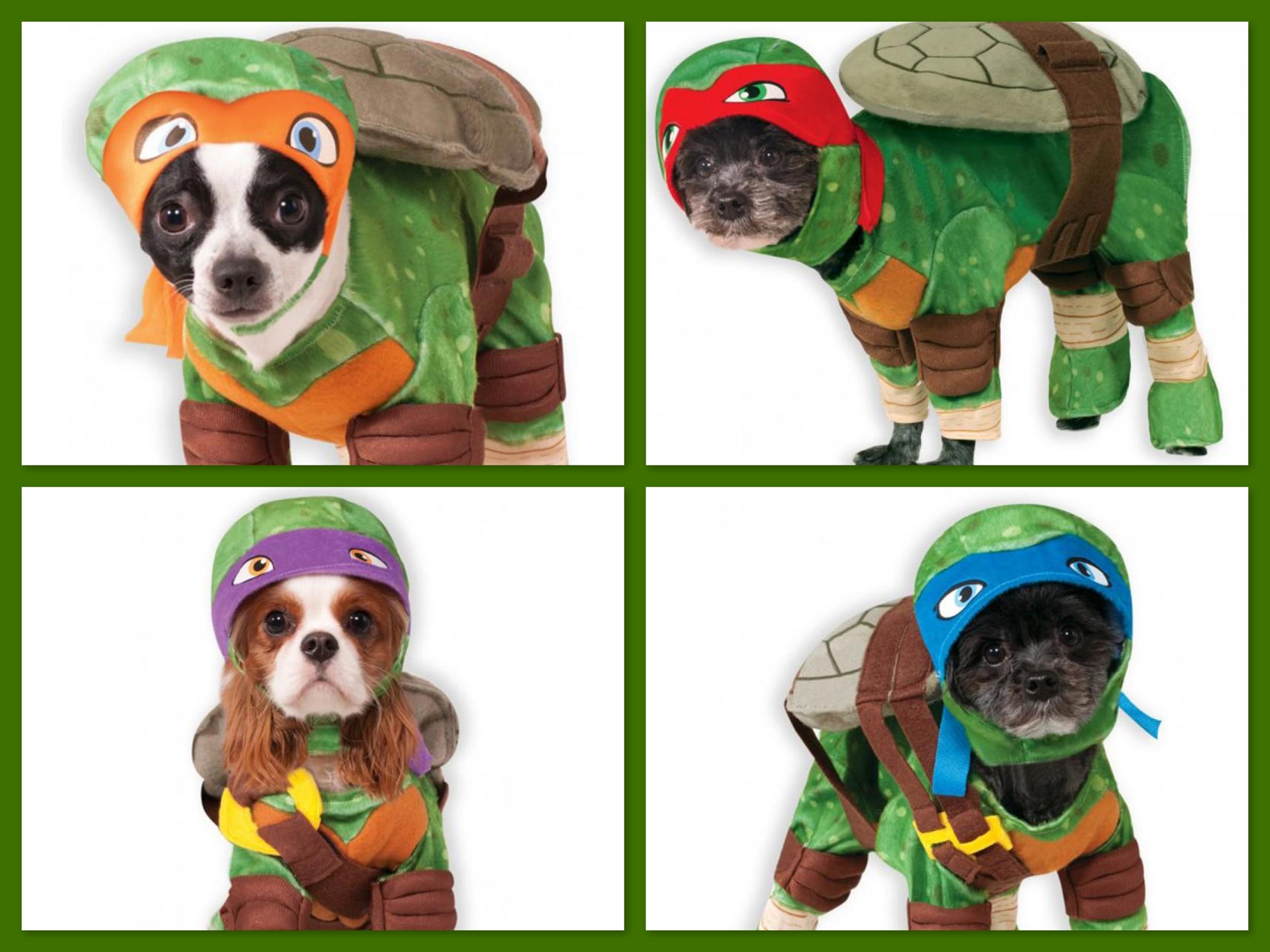 Teenage Mutant Ninja Turtle Pet Costumes, Dog Turtle Halloween Costumes