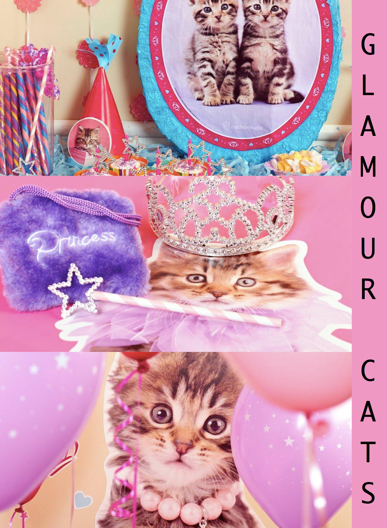 Glamour Cats Party Supplies, Celebrate Cat Cuteness