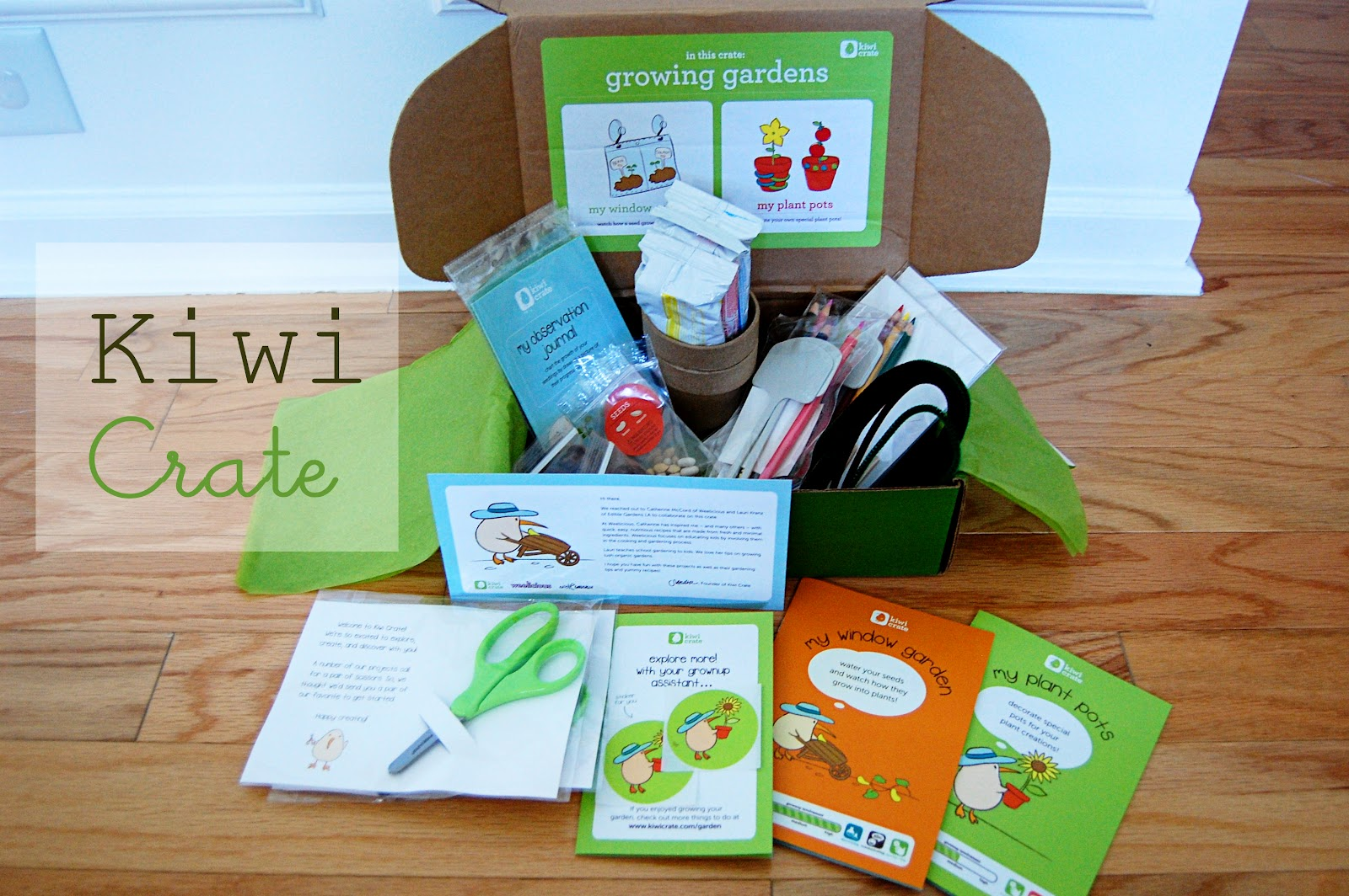 Kiwi-Crate, Best Subscription Boxes