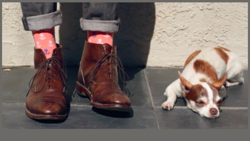 Sock Genius