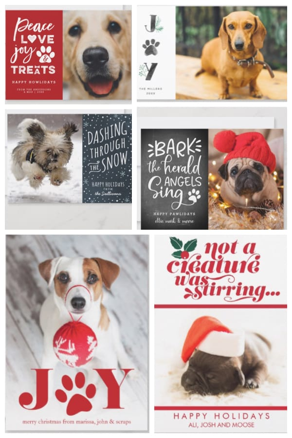 Best Pet Holiday Cards | Dog Lover Christmas Photo Cards | GreatGets.com