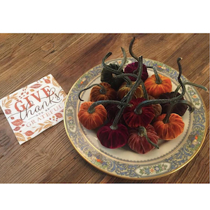 Give Thanks and Be Grateful Mini Velvet Pumpkin Thanksgiving Place Cards
