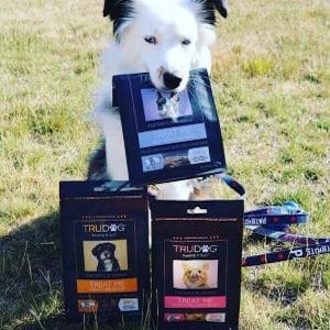 Australian Shepherd With Tru Dog Treats