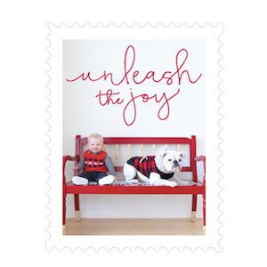 Unleash The Joy Pet Holiday Card